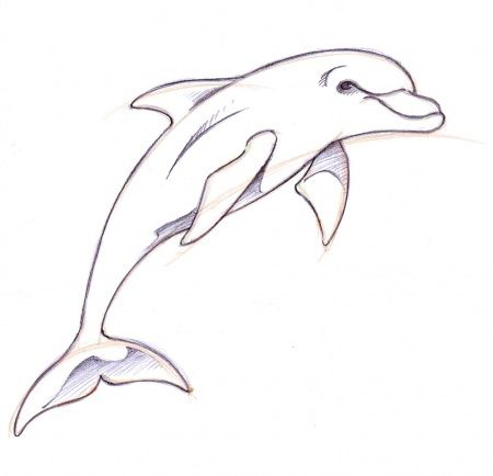Dolphin clipart easy. Tattooed in dolphins tattoo