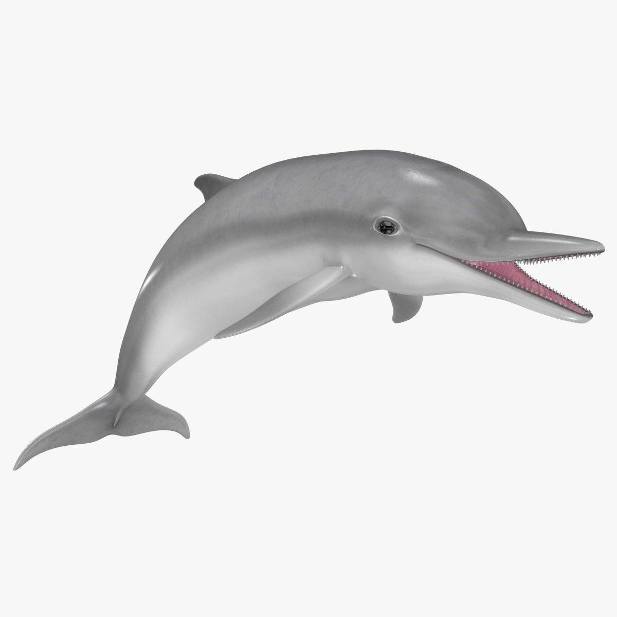 Free animated download clip. Dolphin clipart moving picture