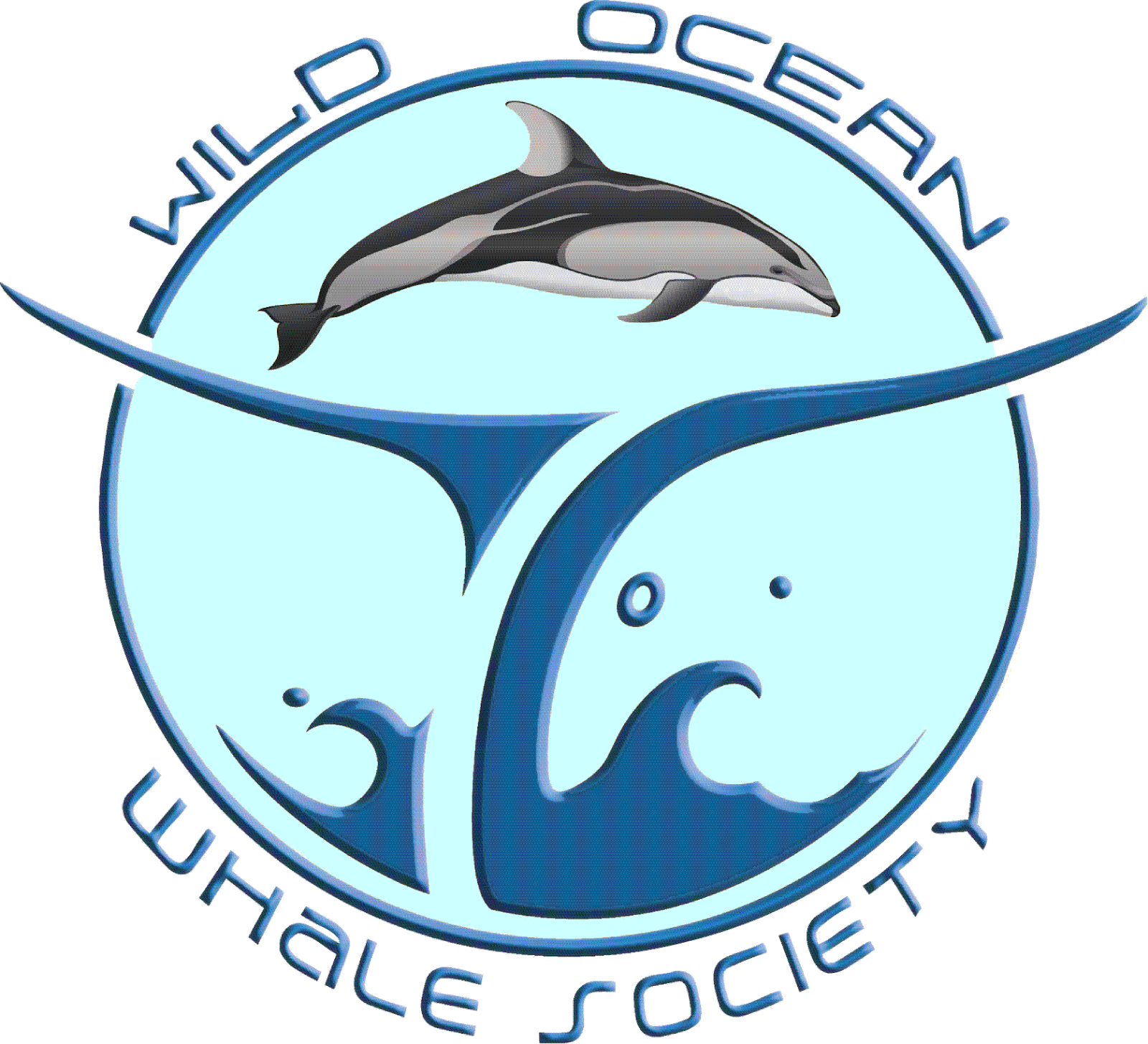 Whales and dolphins bc. Clipart dolphin scene