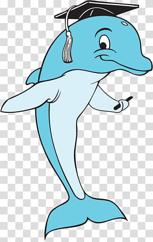 Dolphin clipart school. Crossfire crescent blue area