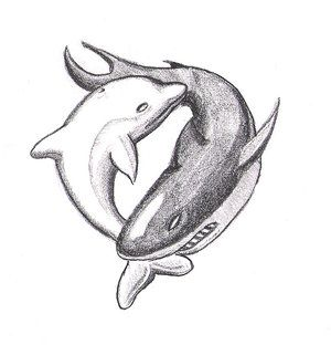 Dolphin clipart shark. Yin yang tattoo ideas