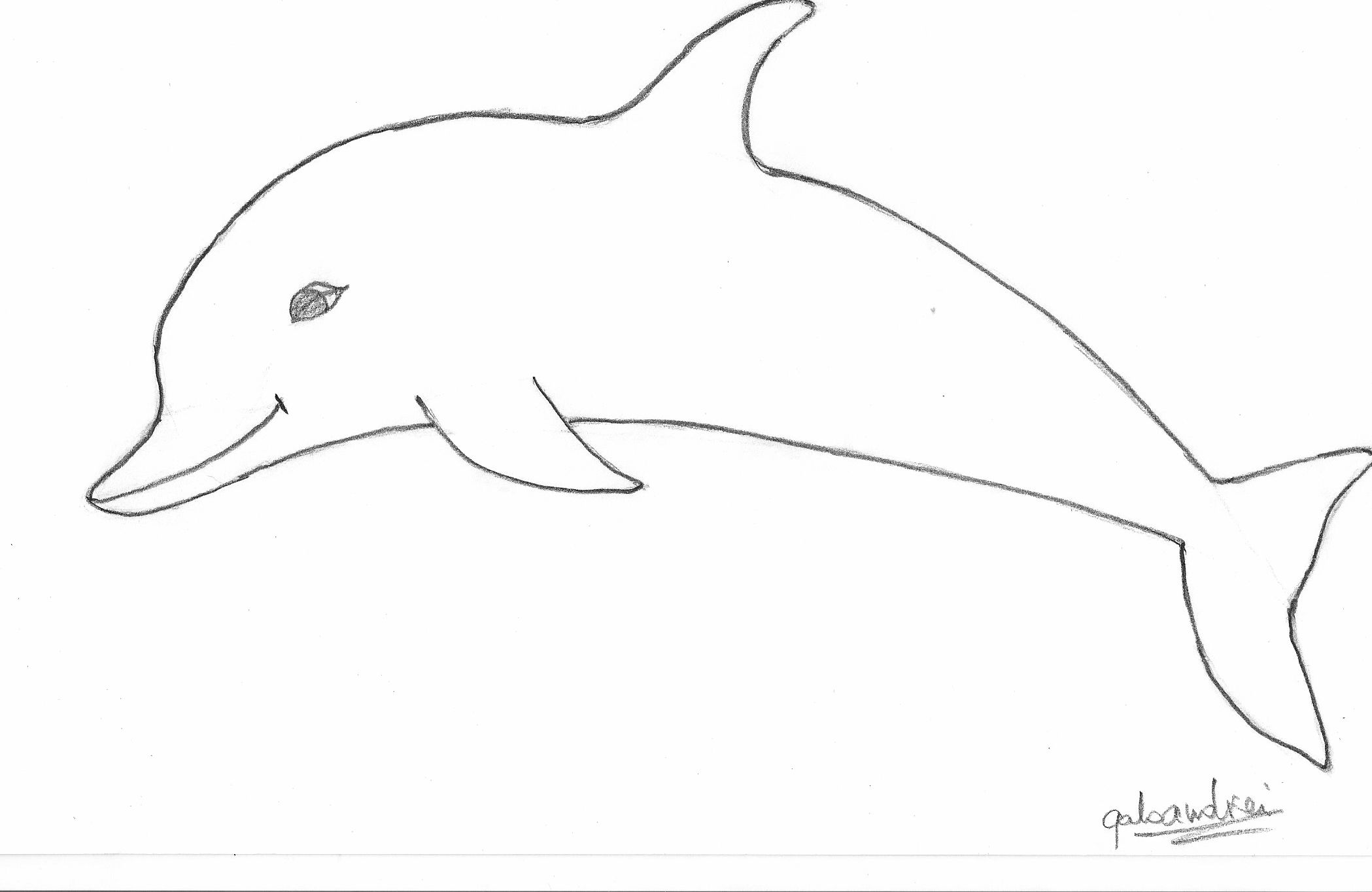 Free drawin download clip. Dolphin clipart easy