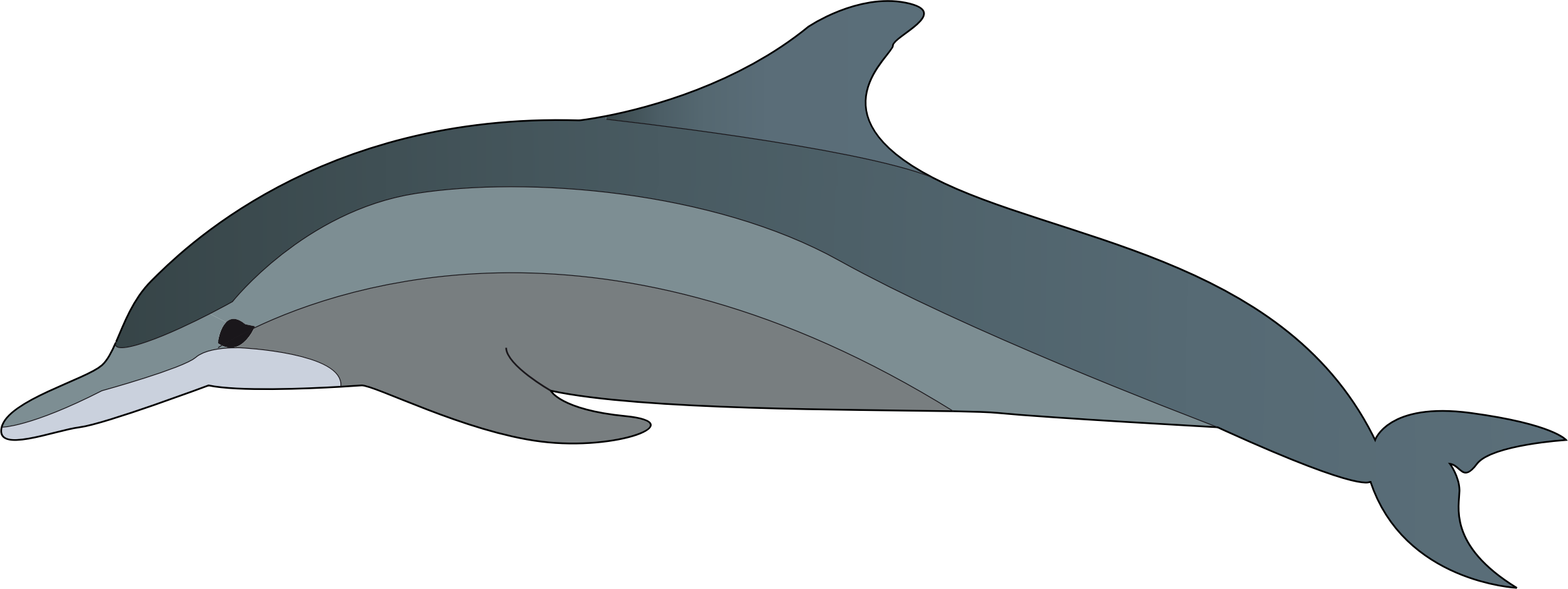 Big image png. Dolphin clipart small dolphin