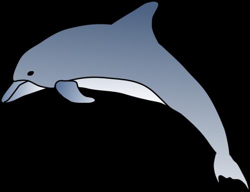 clipart dolphin spinner dolphin