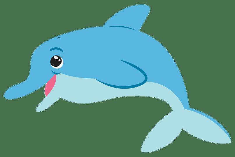 dolphin cartoon image