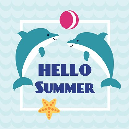 Dolphin clipart summer. Hello card with playing