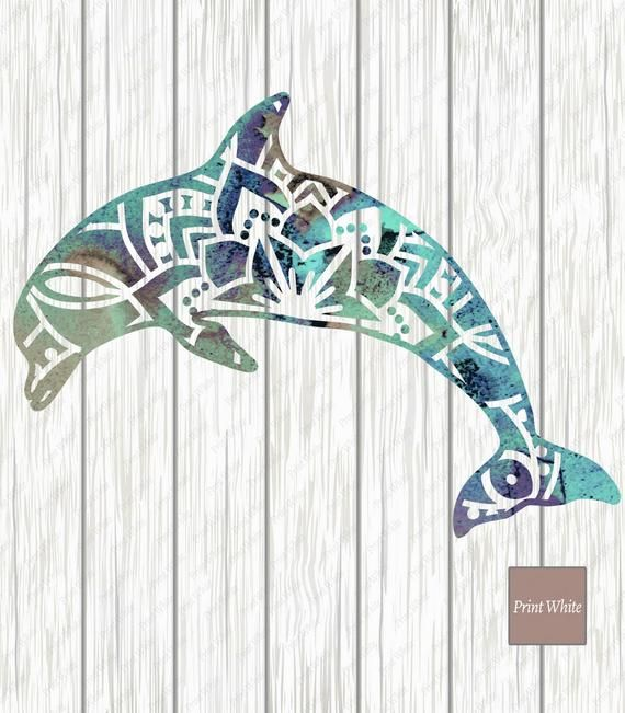 Dolphin clipart summer. Watercolor sublimation design