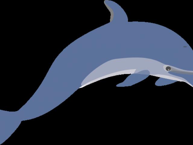Free bottlenose download clip. Dolphin clipart superhero