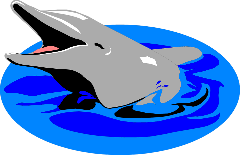 Free stock photo illustration. Clipart dolphin transparent background
