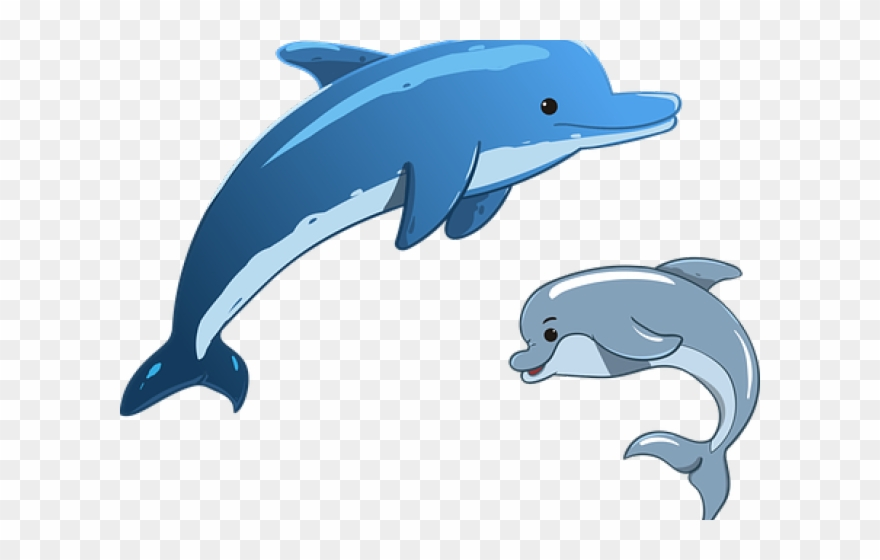 Dolphin clipart dolphin love. Flippers whale cartoon mother