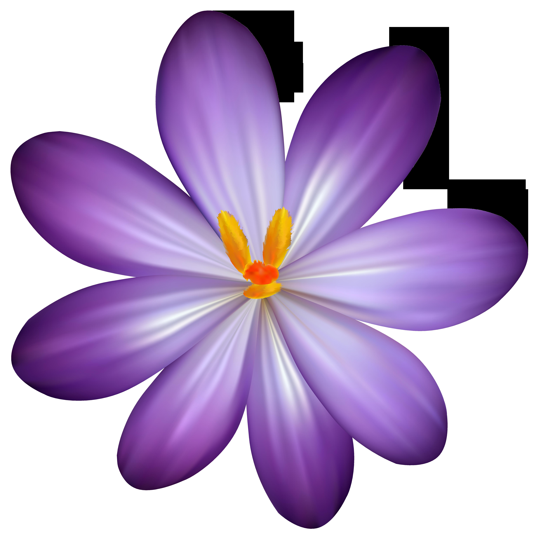 purple clipart transparent