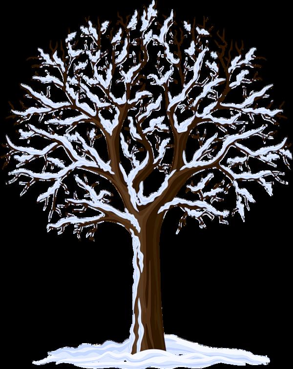 Arbre png rbol bildites. Tree clipart memories