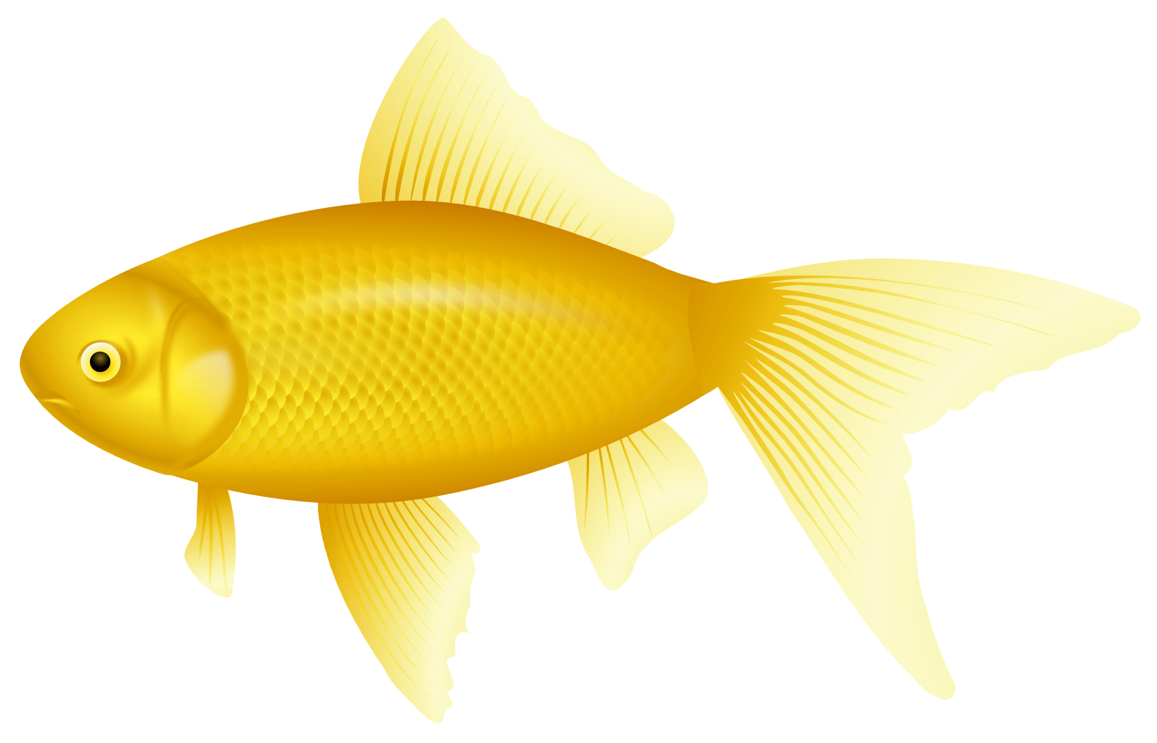 Yellow door for popular. Name clipart fish