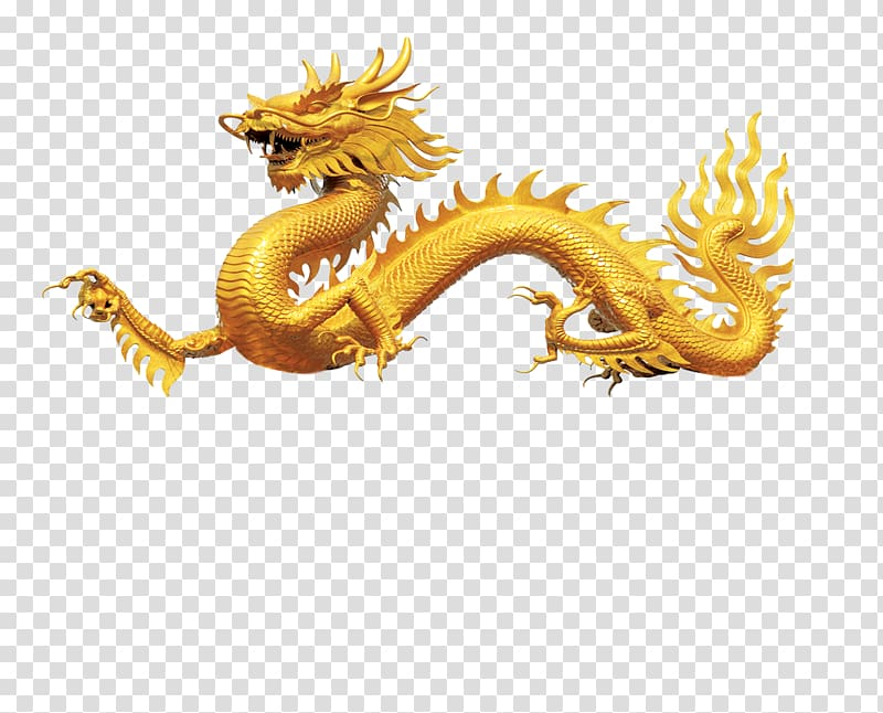 Orange illustration arena of. Dragon clipart golden dragon
