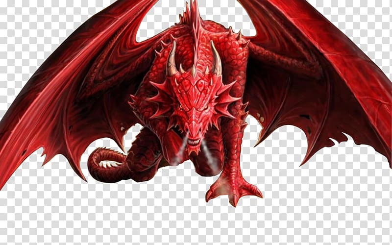 Transparent background png . Dragon clipart smaug