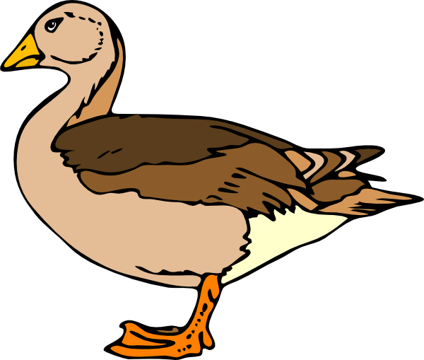 Clipart duck. Clip art at clker