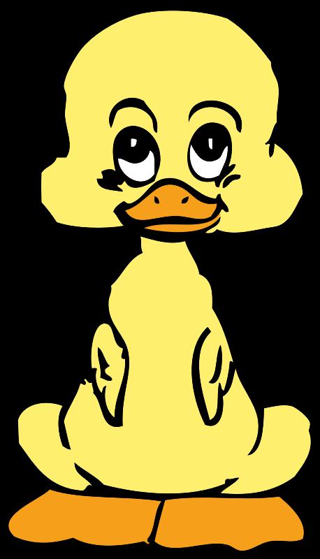 Baby duck medium image. Ducks clipart duckling