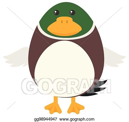 Eps illustration with round. Clipart duck body