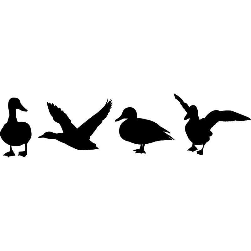 Free duck cliparts download. Hunting clipart goose hunting