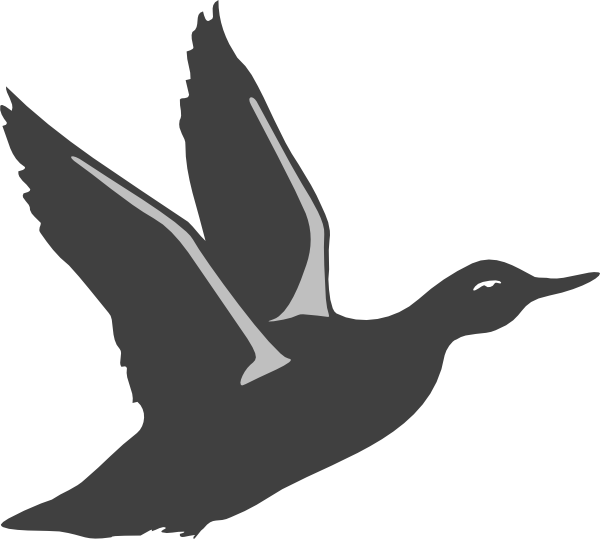 Black silhouette taking off. Wing clipart duck