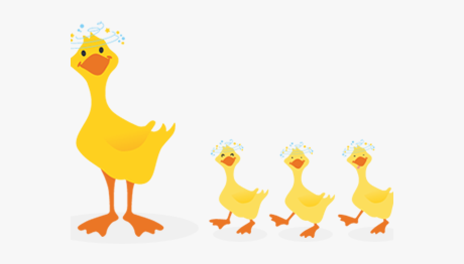 Duck png cliparts . Duckling clipart family