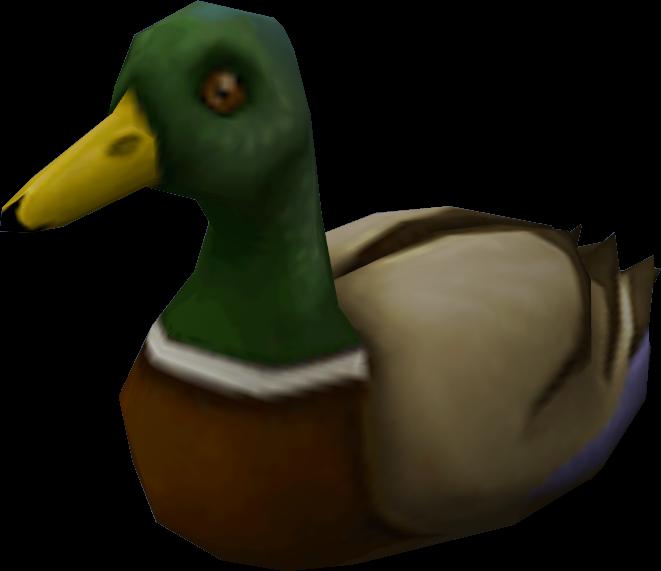 Ducks clipart duck waddle. Runescape wiki fandom powered