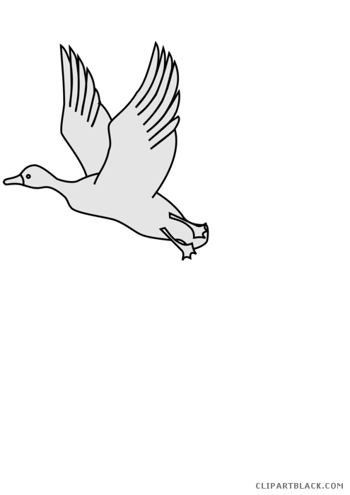 Animal free black white. Clipart duck flying