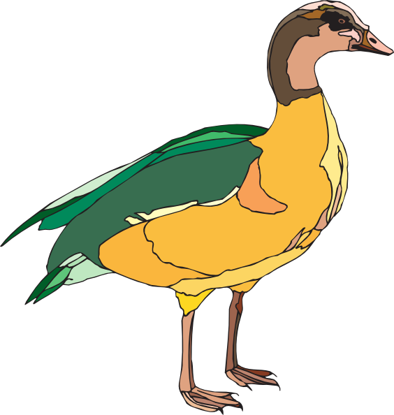 Yellow and green clip. Wing clipart duck