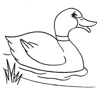 Clipart duck outline. Free of a download