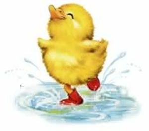 Ducks clipart rain. Duck in free images