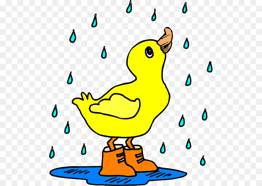 Duck cartoon bird transparent. Ducks clipart rain