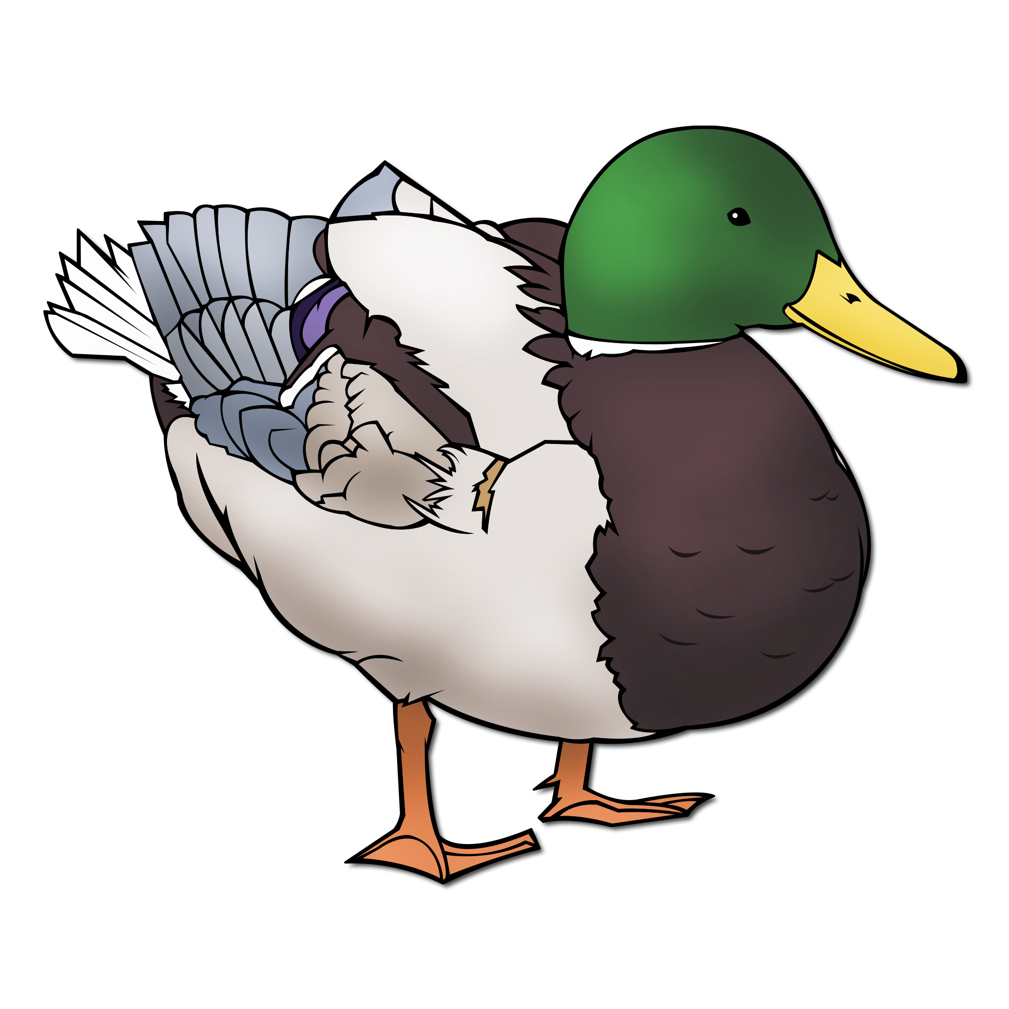Picturae database detail download. Clipart duck realistic