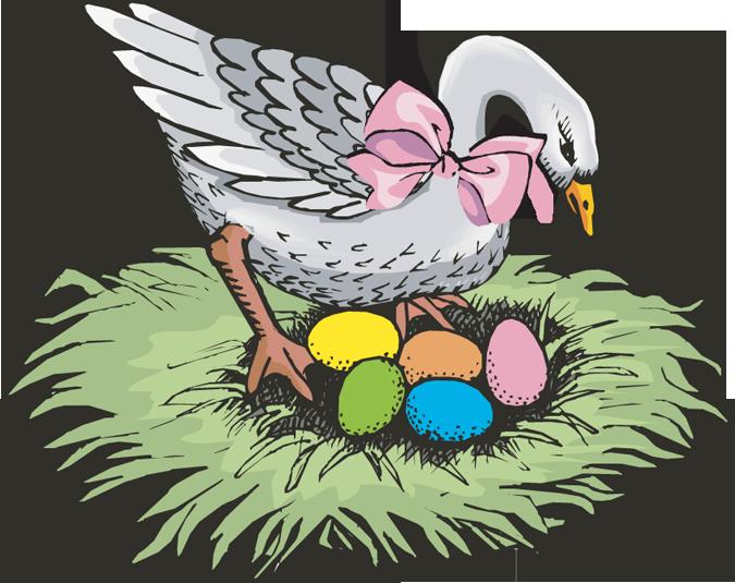 clipart duck realistic