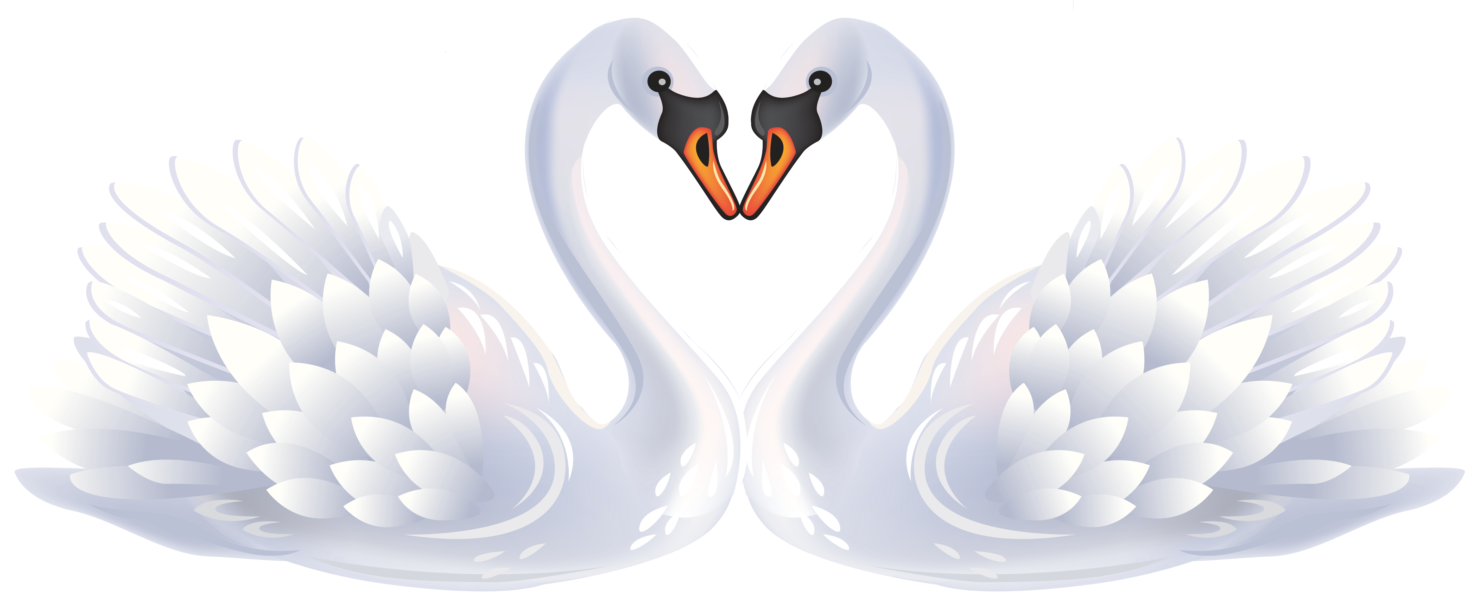 Hearts clipart swan. Valentine swans png gallery