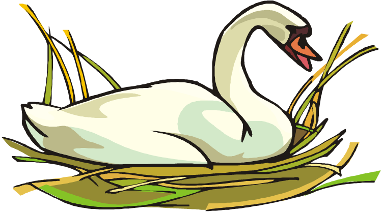 Clipart duck swan. Free