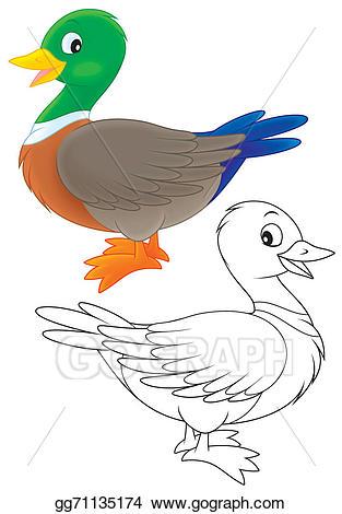Stock illustration gg gograph. Clipart duck wild duck
