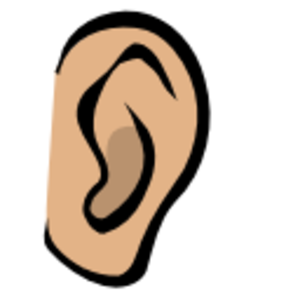 Free images at clker. Clipart ear