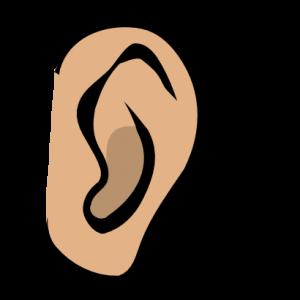 Clip art free panda. Clipart ear