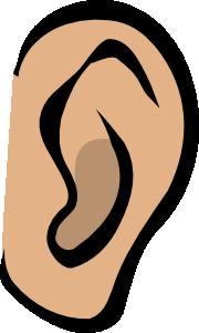 Clipart ear cartoon clip art. Body part at clker