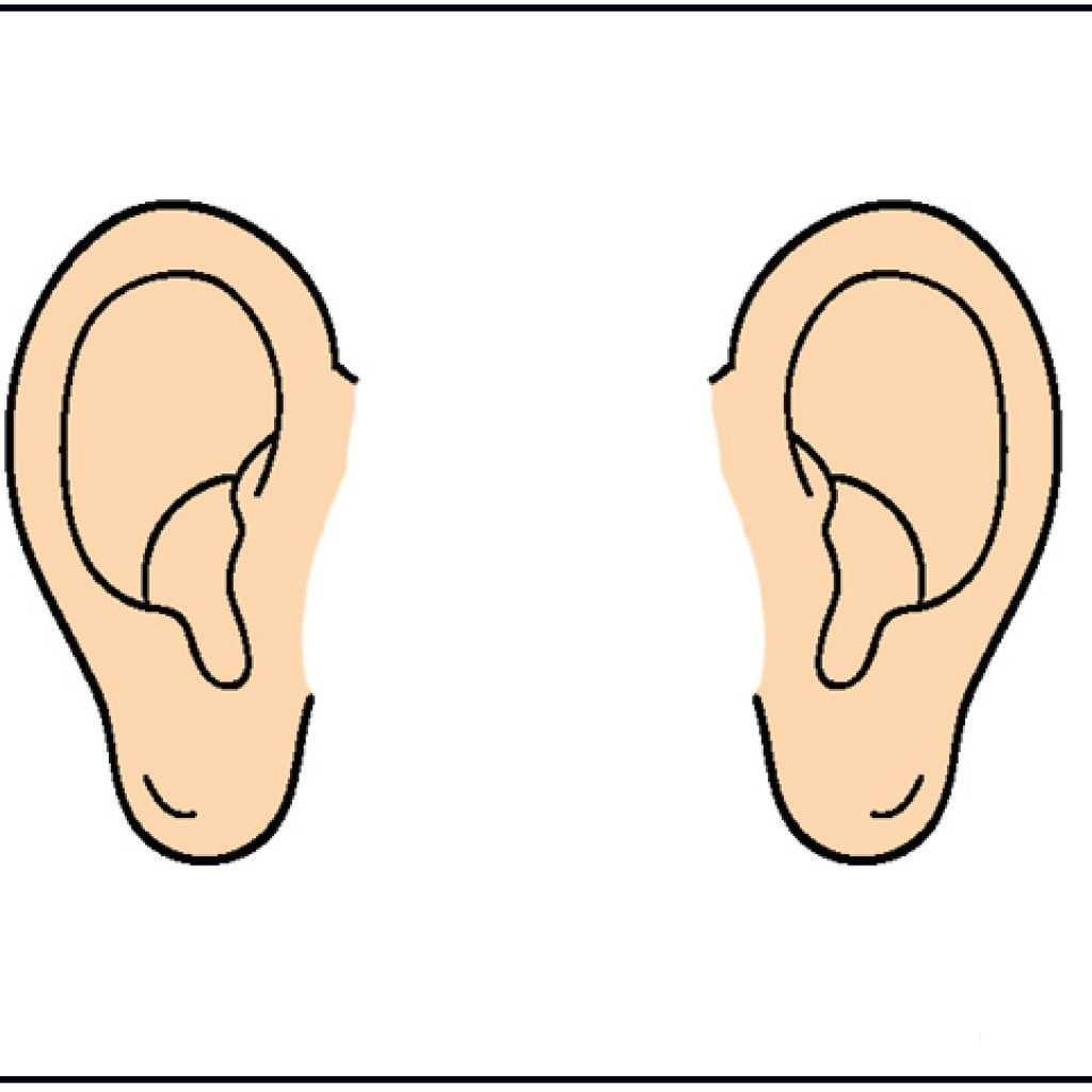 In ears . Clipart ear cartoon clip art