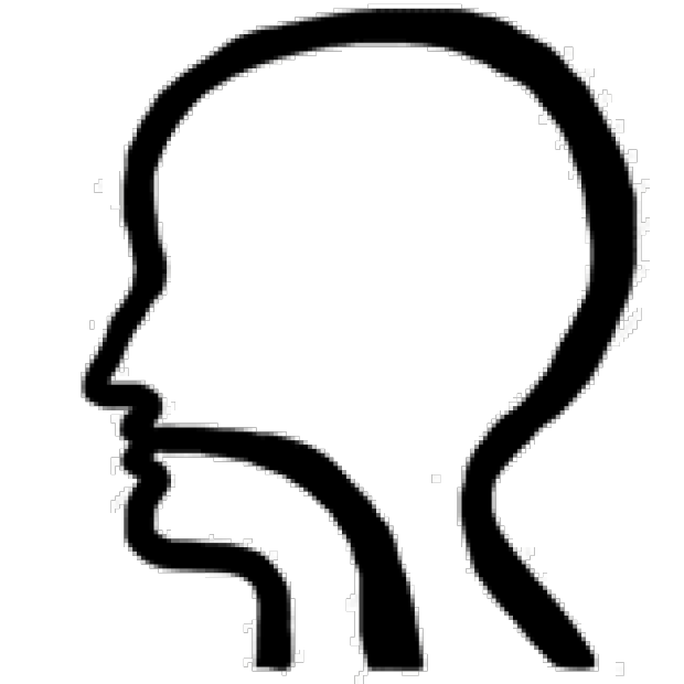 Neck clipart head and neck. Stanford general ent clinic