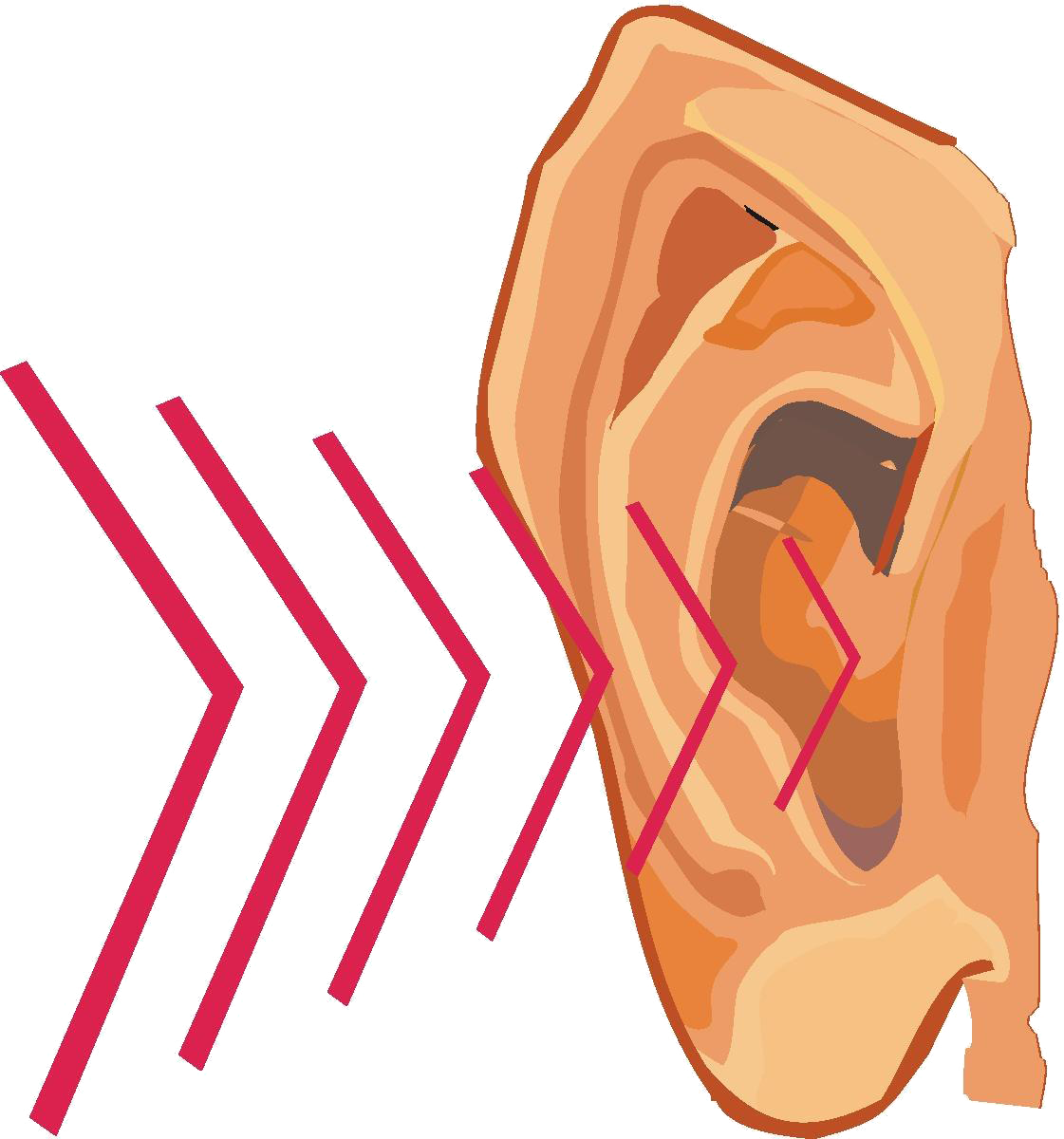 Waves clipart noise.  collection of ear