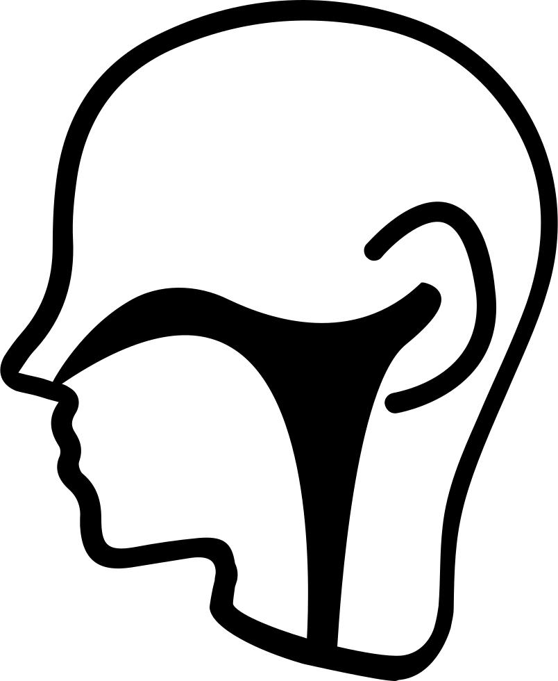 Nose ear nose throat