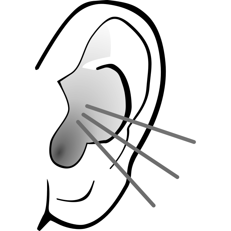 E clipart ear. Free png listening transparent
