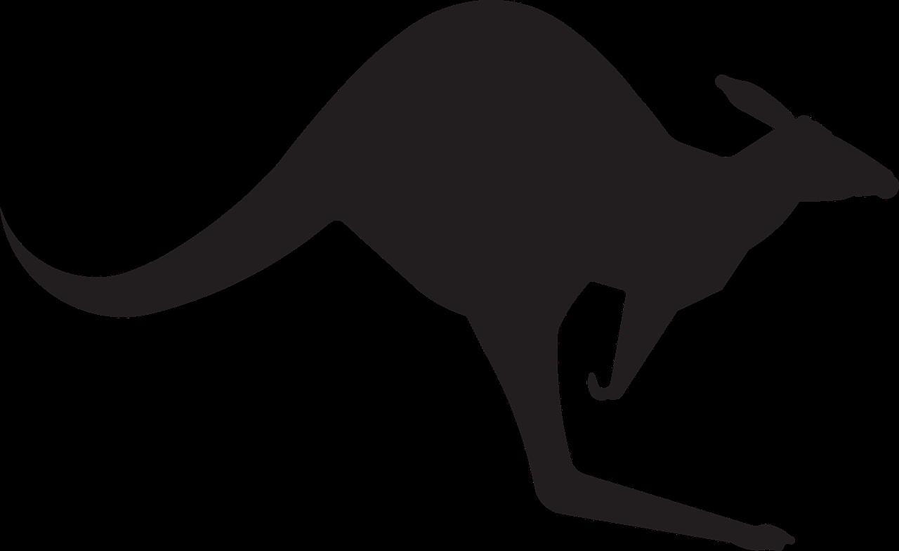Australia animal jump silhouette. Kangaroo clipart stencil