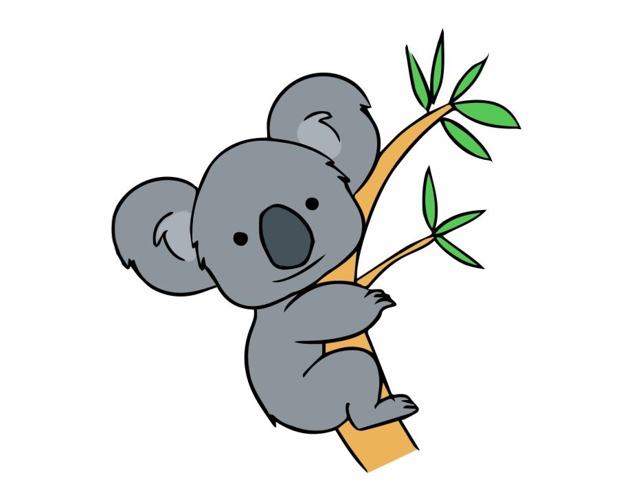 Koala clipart aussie. Ear transparent png download