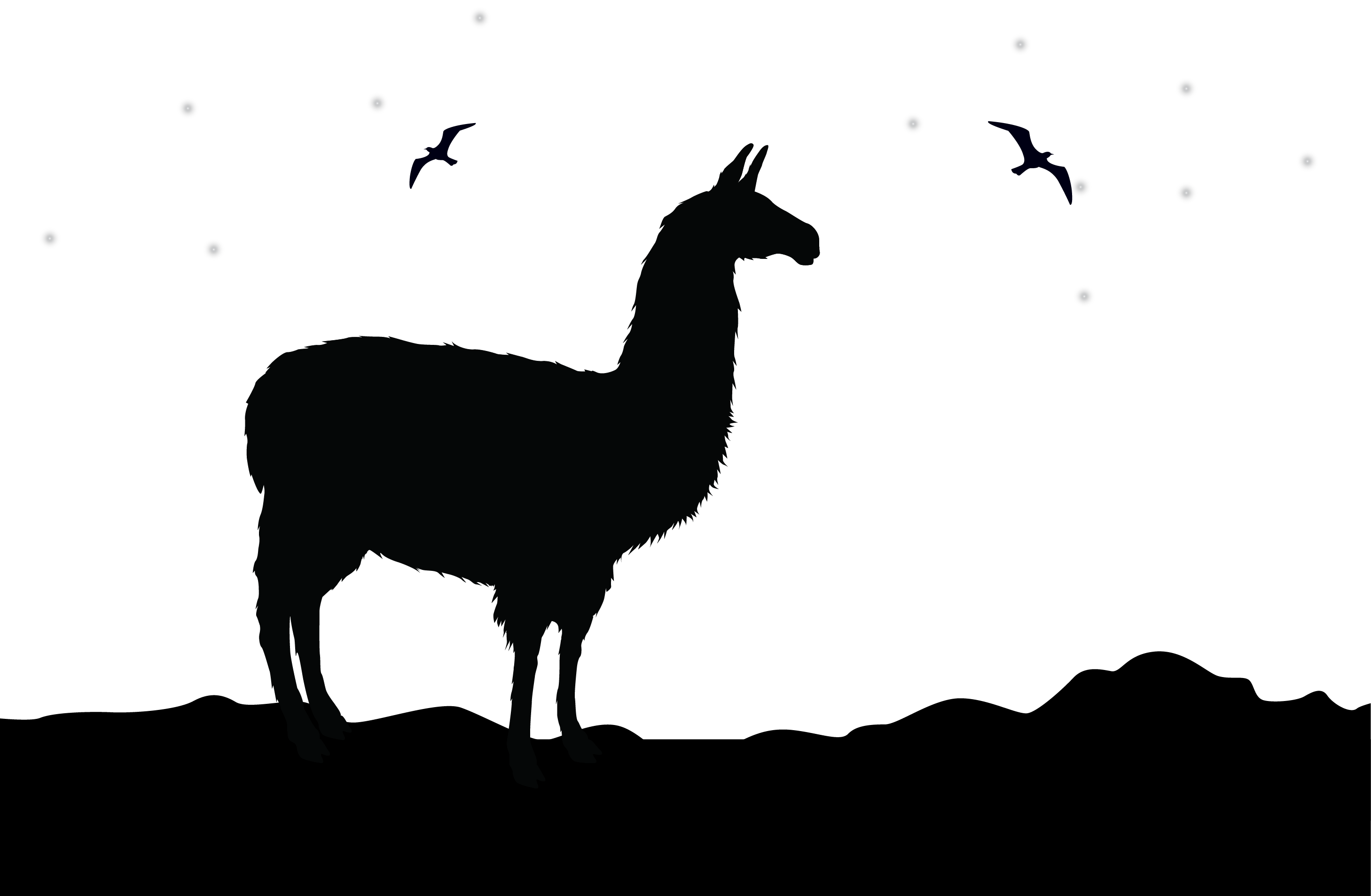 Llama face drawing at. Einstein clipart tongue