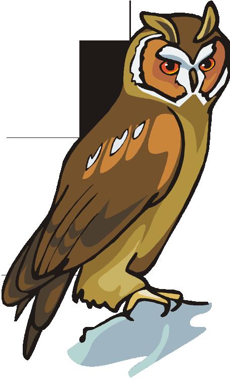 Clipart ear owl. Free