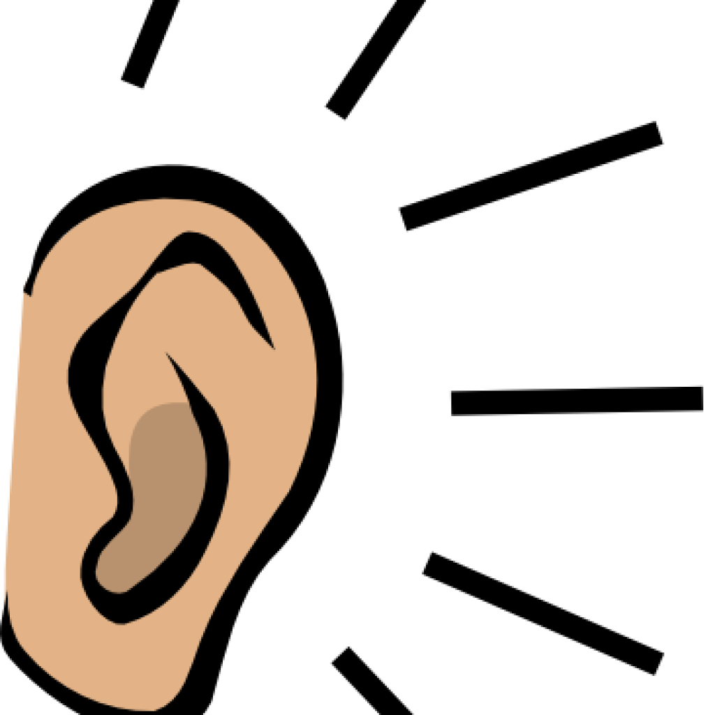 Clipart ear right. Beach hatenylo com ears