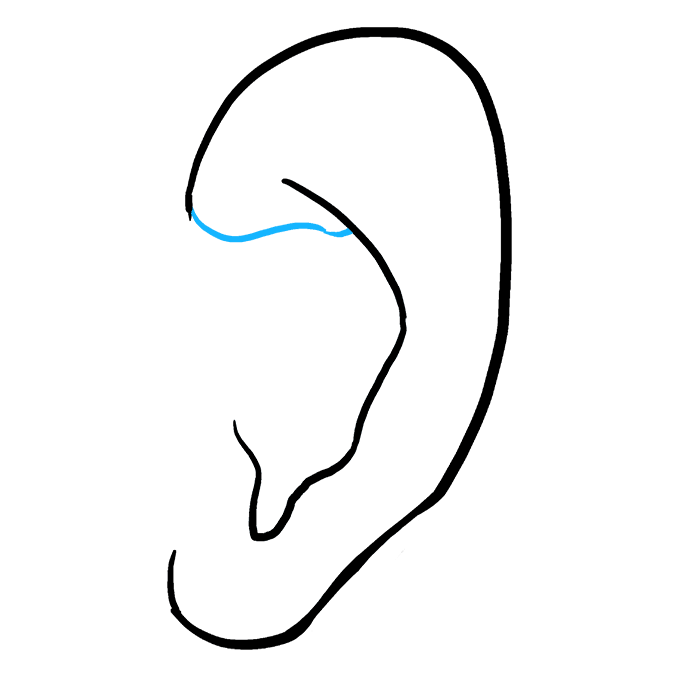 How to draw an. Clipart ear simple